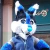 avatar of Empirehuskaroo