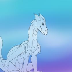 A Dragon Sketch