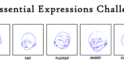 Expression Practice 2