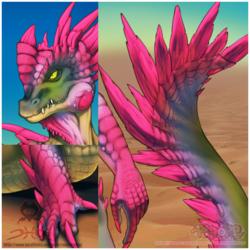 Collab w/ Rude - Desert Crocaguana DETAILS