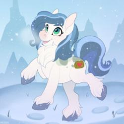 Mountain Pony - Commission