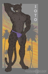 Commission: ~ Soto Reference ~