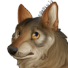 avatar of Fireflii