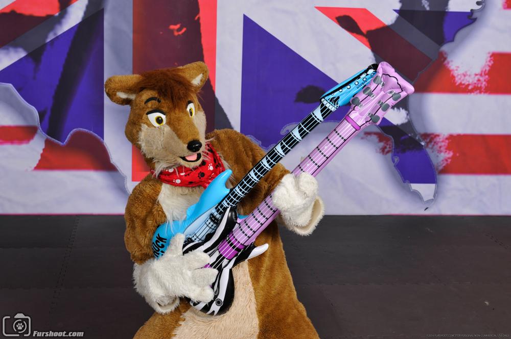 Rock n Roll Dingo