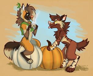 wanna share my pumpkin