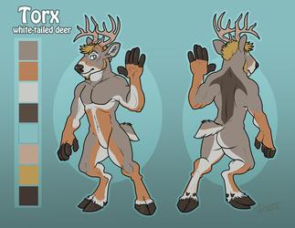 Torx character design