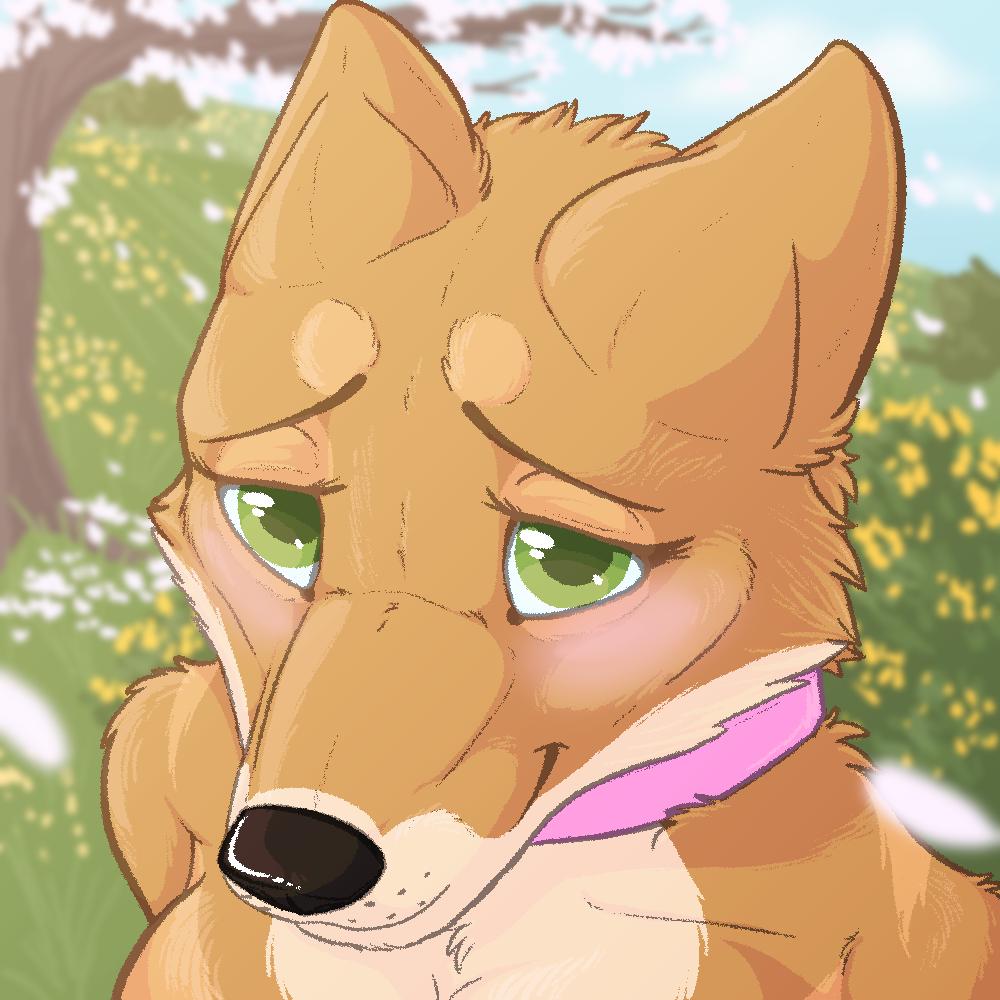 [g] Shy Doggo