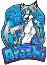 Arashi Badge (FWA 2015)