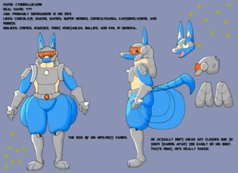 Cyborg-Lucario reference sheet