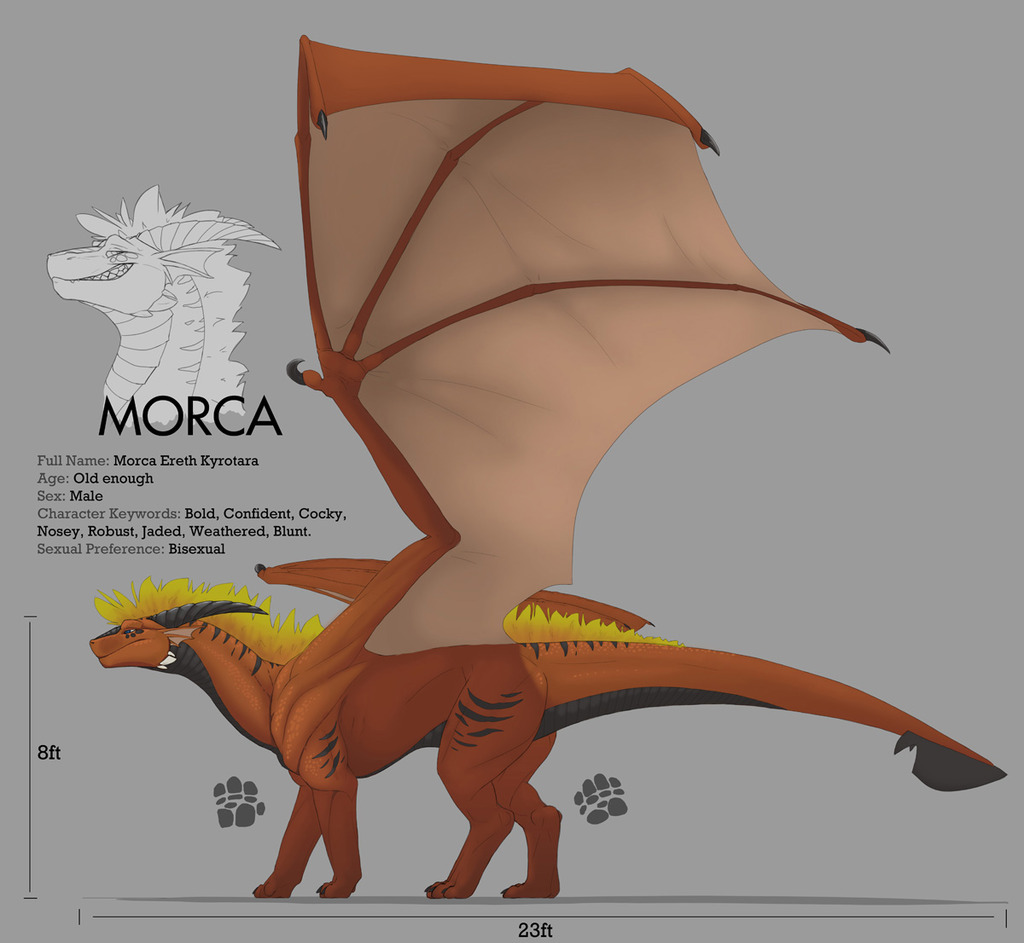 Most recent image: Morca Reference 2013