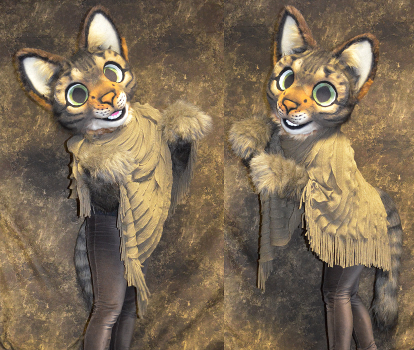 Tabby Cat Partial