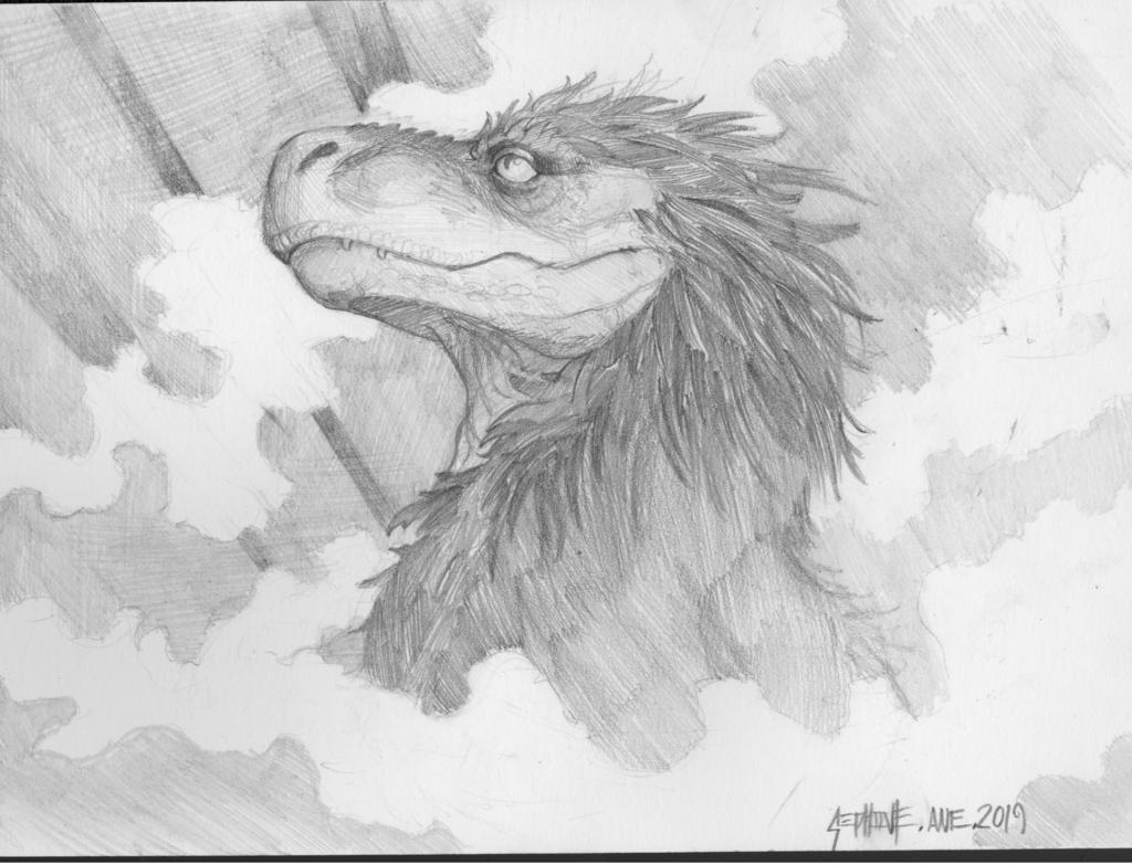 Regal Rex