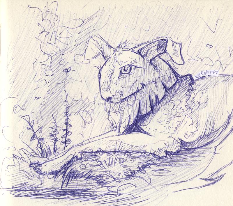 Rabbitmonster - sketch