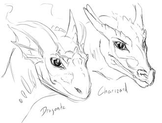 dragonite & Charizard