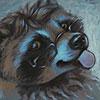 avatar of rackety