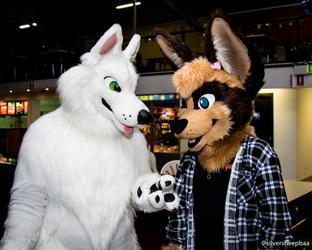 Fur4All 2017: Diego and Synkka Pocket Fox