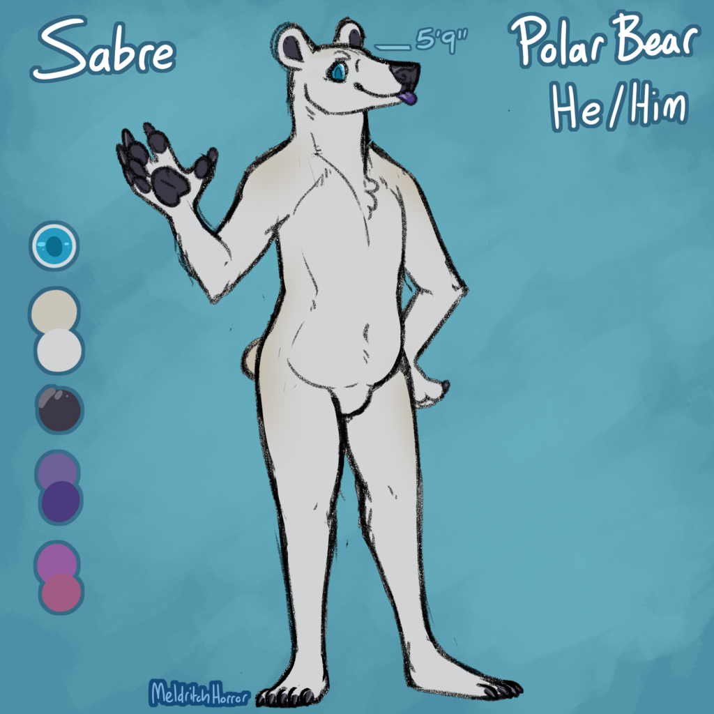 Most recent image: Sabre the Polar Bear, reference