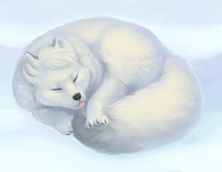 Sleepy Floof