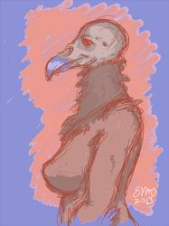 Vulture Gal