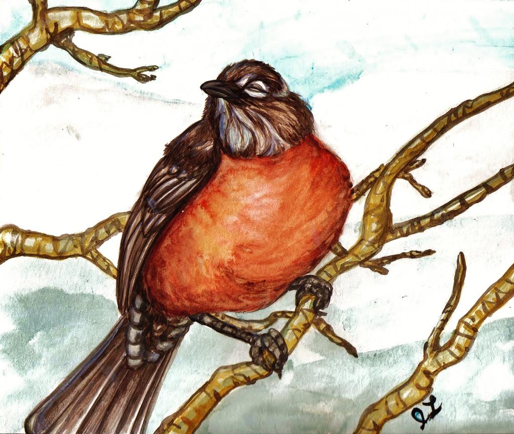 The January Robin