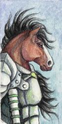 Warrior Horse Bookmark - 2011