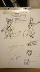AEX-M 22-87-01: Summer Fox
