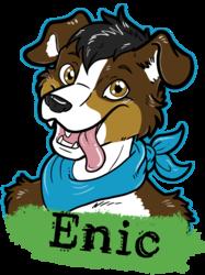 Enic Badge