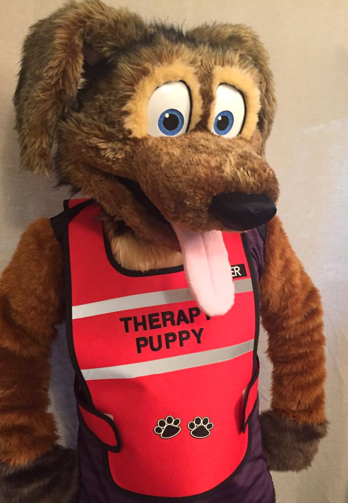 Therapy Puppy Vest