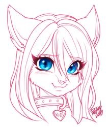 Kitty blush