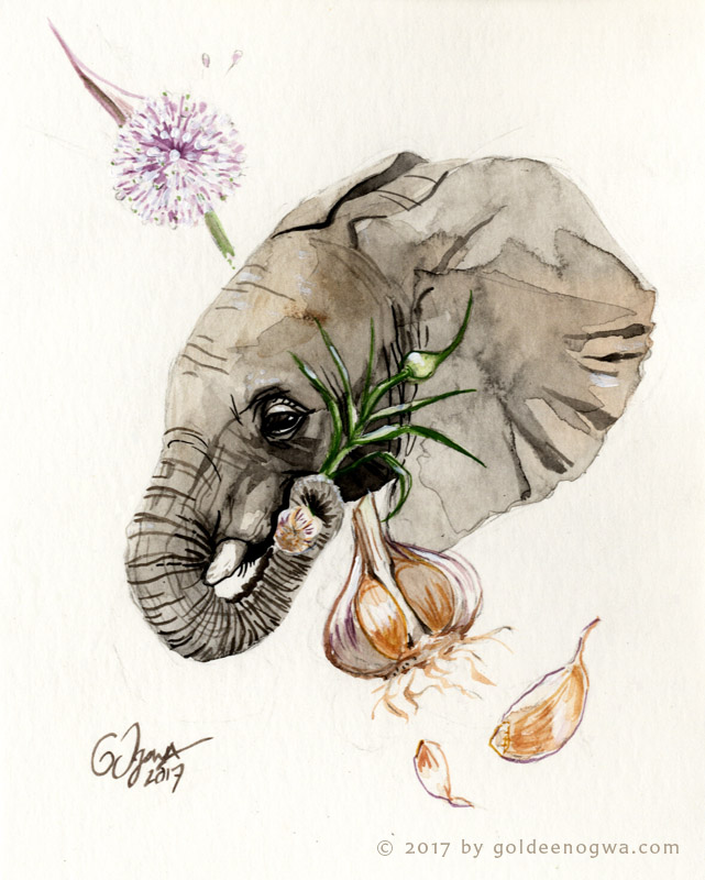 Most recent image: Elephant Garlic