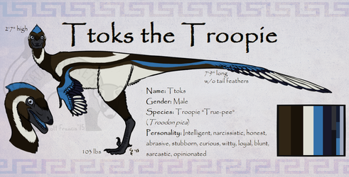 New 'Sona Reference - Ttoks the Troopie