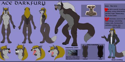 Ade Darkfury ref sheet