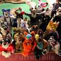 All the suiters!