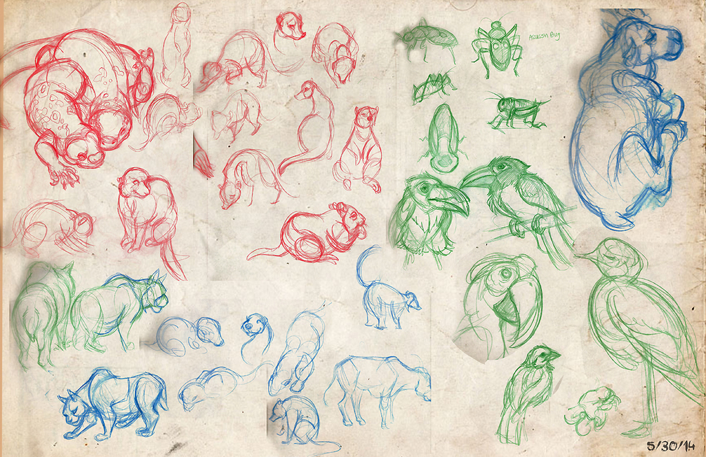 Most recent image: Observation Animal Drawings from the Zoo 5/30