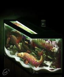 Dream Fish