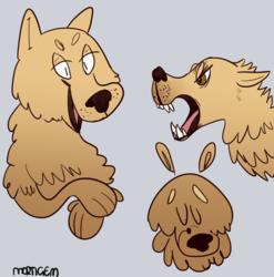 Wolf doodles!