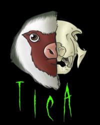 Half Skull Tica