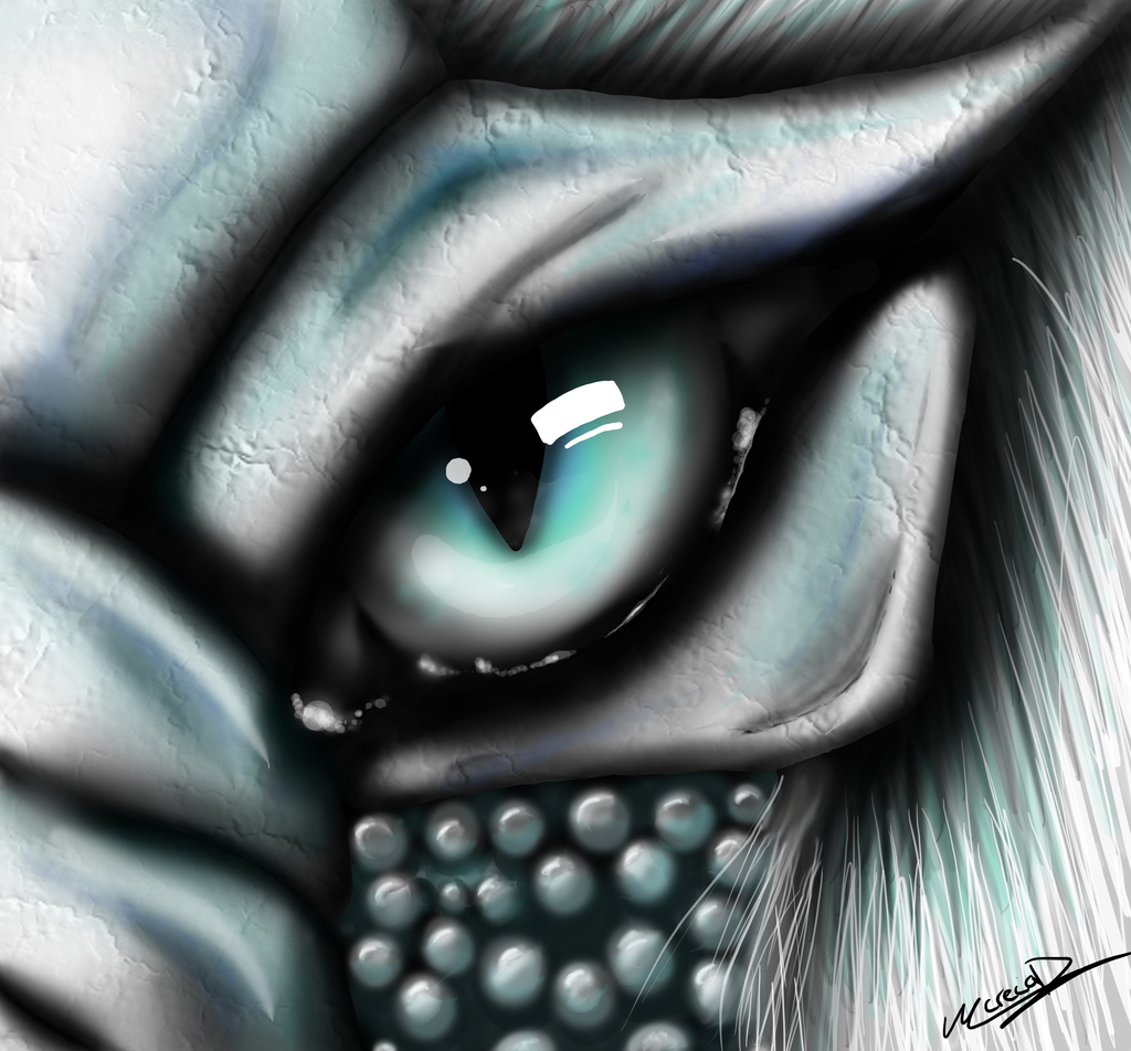 Leso eye