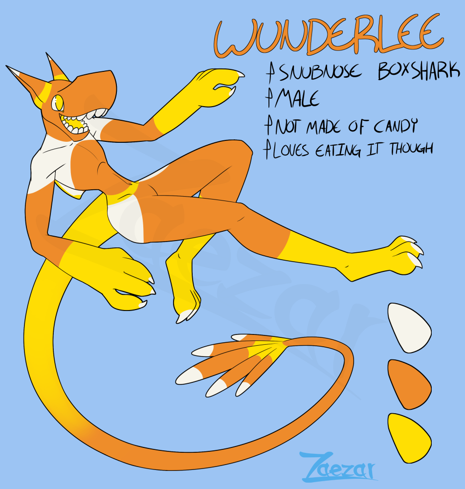 Box Shark Adoptable: Wunderlee