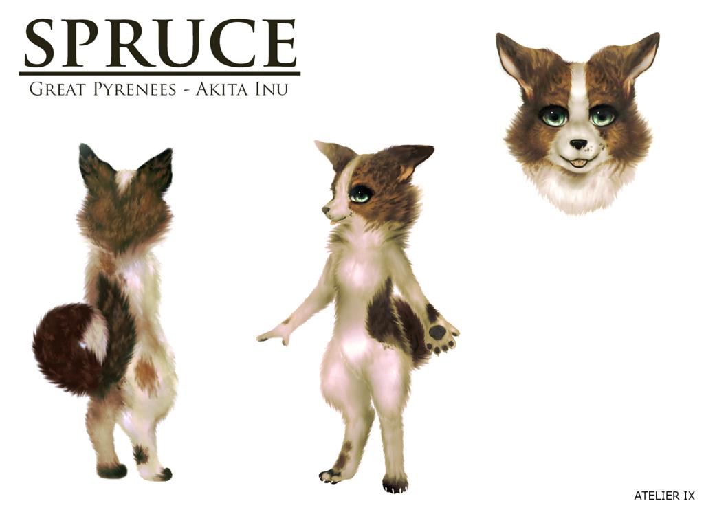 Spruce ref