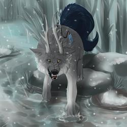 Winter Stroll