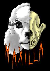 Gift: Half Skull Maxilla