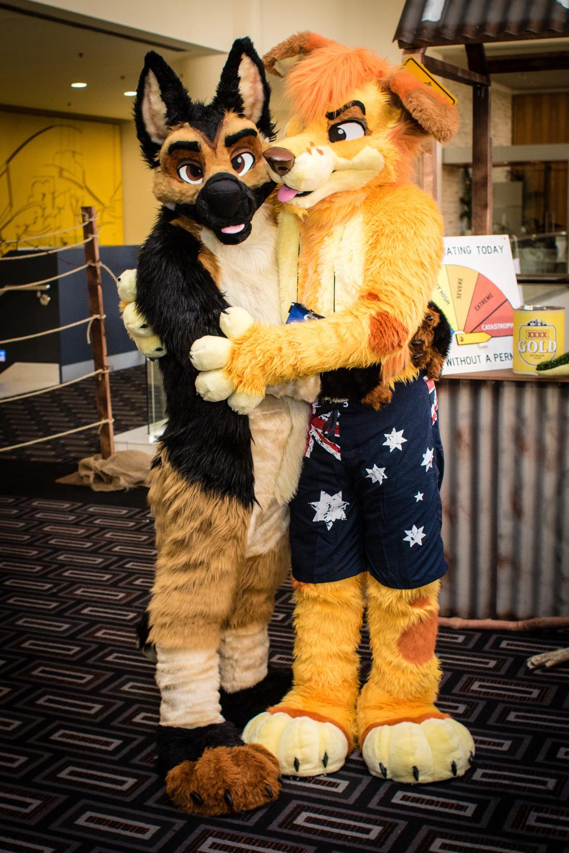 FurDU 2017: Golden Hug