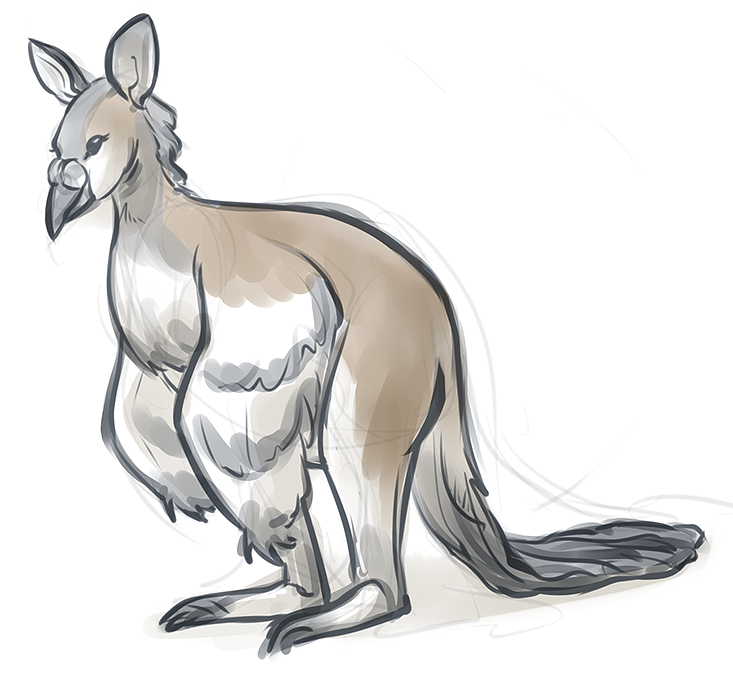 WallabyPigeon