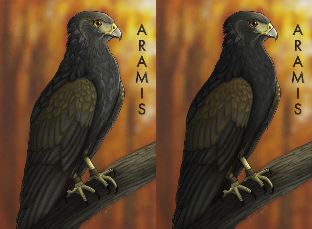 Aramis Badges (1st Set)