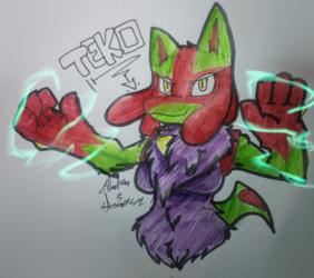 Teko -gift-