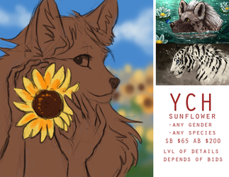 YCH Sunflower