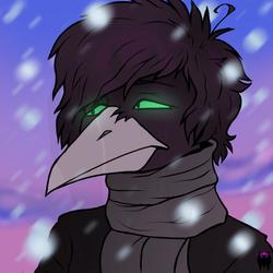 ItsMettsu Winter Icon