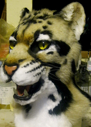 RF 2013 Charity Clouded Leopard mask