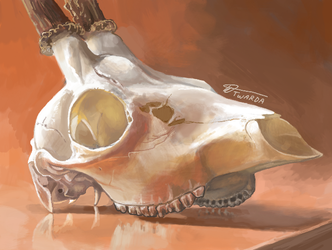 Ambient Deer Skull [3DS]
